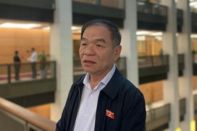 Đại biểu Quốc hội Lê Thanh Vân (Đoàn Cà Mau).