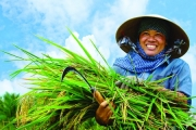 5 Sự kiện nổi bật của lĩnh vực ngành nghề nông nghiệp, nông thôn