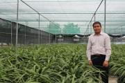 Đáng nể vườn địa lan Hoàng Vũ đạt kỷ lục lớn nhất nước