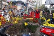 Người bán hoa kiểng ở miền Tây thà chở về chứ không bán rẻ như cho