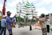 Xuất khẩu gạo đầu năm nhiều tín hiệu vui 