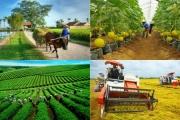 Thủ tướng Chính phủ chủ trì Hội nghị trực tuyến toàn quốc về nông nghiệp, nông dân, nông thôn