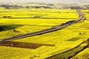 Các ngân hàng thương mại phải tăng vốn vay cho nông nghiệp