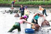 Để du lịch nông nghiệp trở thành lợi thế
