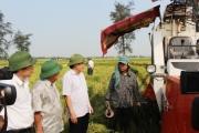 Tạo môi trường thuận lợi để doanh nghiệp dẫn dắt nông nghiệp