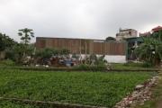 Phường Yên Sở: Nhà ở 'mọc' trên đất nông nghiệp, sao không xử lý?