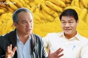 HAGL Agrico miễn nhiệm 6 Phó Tổng Giám đốc, một sếp của Thaco vào thay
