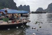 Cần một ban quản lý khu di sản chung Hạ Long – Cát Bà