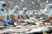 Nông nghiệp Việt Nam lập kỷ lục xuất siêu trong năm 2018