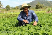 Lâm Đồng sắp có huyện thứ 2 cán đích nông thôn mới