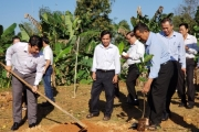 Nông dân Đà Nẵng tham gia Tết trồng cây, xây dựng nông thôn mới
