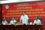 Tập đoàn Công nghiệp Cao su Việt Nam phải hướng tới quy mô 10 tỷ USD