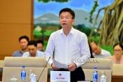 Chính phủ đề nghị lùi thời hạn sửa Luật Thuế bảo vệ môi trường, Luật Đất đai