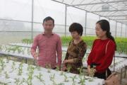 Trần Văn Tân – Thành công từ niềm đam mê với nông nghiệp sạch
