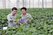 Kiến tạo thị trường bất động sản nông nghiệp Việt Nam  Kiến tạo thị trường bất động sản nông nghiệp Việt Nam: Không đi một mình, nông nghiệp Việt Nam cần gì để bứt phá?