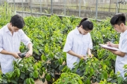 Chất lượng nguồn nhân lực Việt Nam thời FTA: Vấn đề sống còn