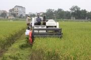 Nghị định số 116: Khơi thông dòng vốn đầu tư cho 'tam nông'