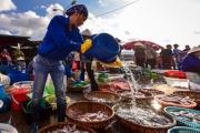 Chợ cá Thợ mỏ