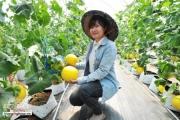 Truy xuất quản lý hơn 4.000 mã sản phẩm nông sản an toàn