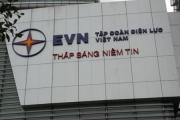 EVN đấu giá triệt thoái vốn tại EVNFC: Giá khởi điểm có quá cao?