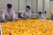 Rau quả xuất khẩu đạt hơn 2 tỷ USD và cơ hội lớn từ... quả chuối