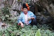Người dân vùng cao khao khát được trồng cây dược liệu