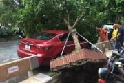 Hà Nội: Hàng loạt cây bật gốc sau trận mưa giông cuối chiều