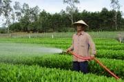 """Nông thôn mới Quảng Nam: Quế An """"thay da, đổi thịt"""""""