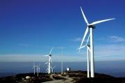 Ninh Thuận hút hơn 71.000 tỷ đồng đầu tư vào năng lượng tái tạo