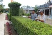 10 năm nông thôn mới huyện Vị Thủy