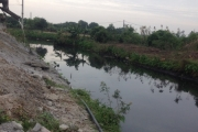 """Thái Bình: Sông Đoan Túc bị """"bức tử"""" mỗi ngày, ai phải chịu trách nhiệm?"""