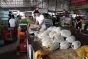 Nông sản đi Trung Quốc: Giải mã thương lái