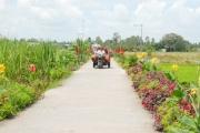 Đặc sắc xây dựng nông thôn mới Đồng Tháp