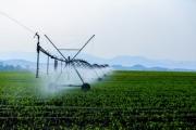 Nông nghiệp Nghệ An đổi thay toàn diện