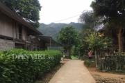 Dấu ấn xây dựng nông thôn mới của Hội Nông dân huyện Mộc Châu