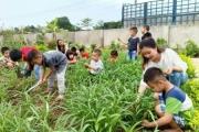 Phát triển nông nghiệp để giảm nghèo bền vững