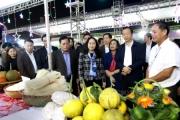 Khai mạc Ngày hội Hoa quả tươi huyện Hữu Lũng năm 2019