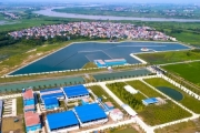 """Về Bảo Sinh: Cty đăng ký vốn 10 tỷ, """"góp sức"""" trăm tỷ xây NMN Sông Đuống"""