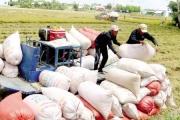 Bộ Công Thương tích cực đẩy mạnh xuất khẩu gạo ra nước ngoài