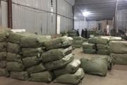 Thu giữ hơn 100 tấn dược liệu 'đội lốt' hoa quả sấy khô