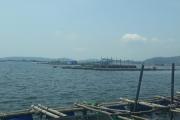 Phú Yên tăng cường quản lý nuôi trồng thủy sản