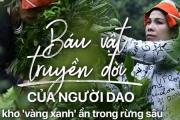 'Kho vàng' ẩn trong rừng sâu, báu vật 500 tuổi ở Hà Giang