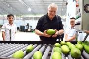 Trăn trở trái cây Việt Nam