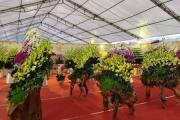 Hội chợ Xuân 2020 thu hút người tiêu dùng Thủ đô