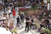 Chợ hoa phố cổ