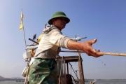 Cuối năm 'săn' lộc biển