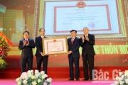 Lạng Giang chính thức đạt chuẩn huyện nông thôn mới