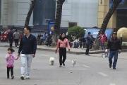 Hà Nội tạm dừng hoạt động không gian đi bộ hồ Hoàn Kiếm