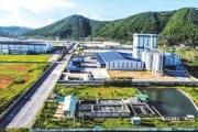 Phát triển KKT Đông Nam Nghệ An thành khu vực kinh tế năng động