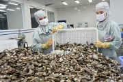 Xuất khẩu tôm Việt Nam được dự báo thuận lợi hơn trong năm 2020